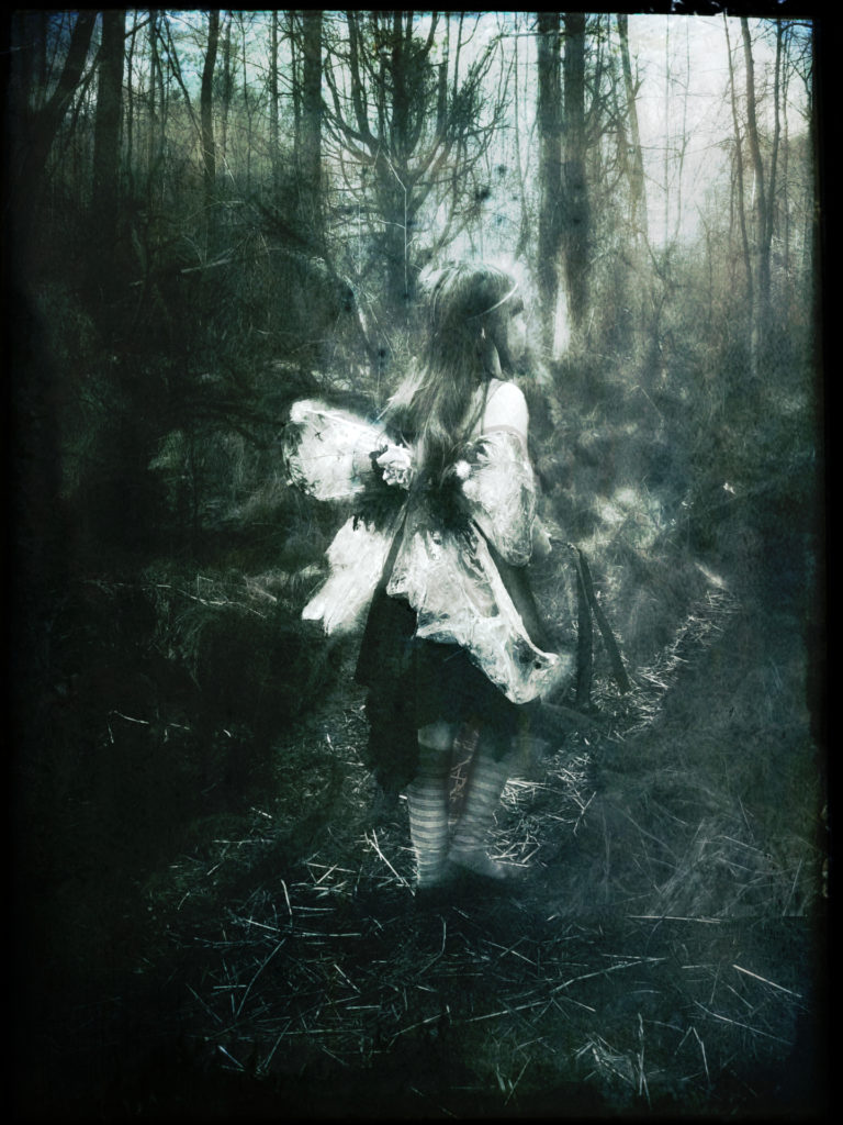 faerie in a forest