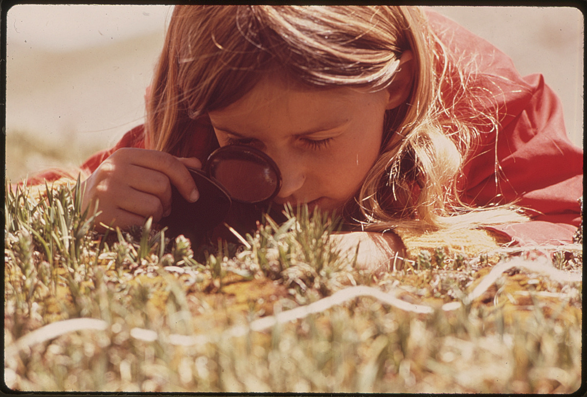 girl lying in grass examining something with magnifying glass